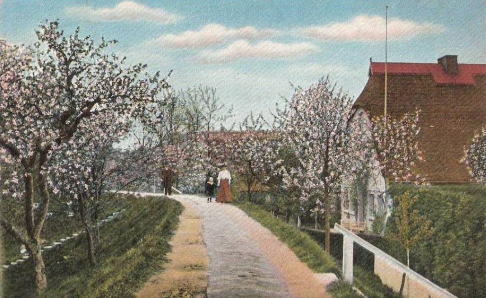 Kościelna – tylko znazwy - wieś