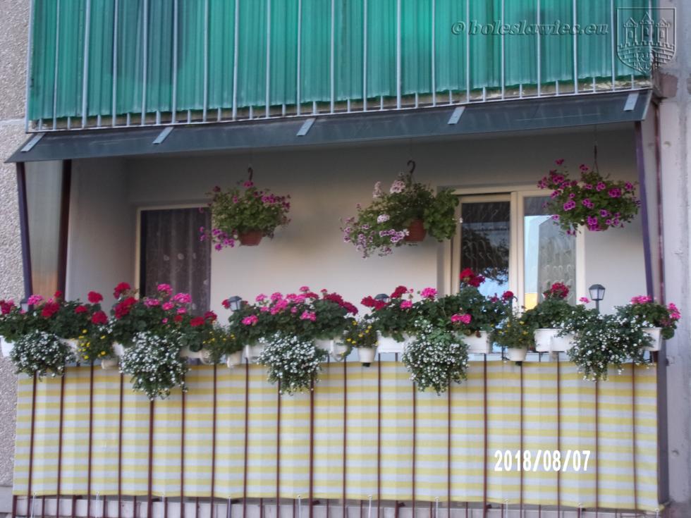 Bolesławiec wkwiatach