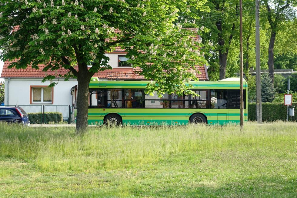 Wczerwcu autobusy MZK wyjadą na ulice Bolesławca